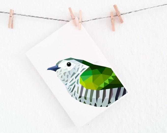 Shining Cuckoo, Native New Zealand cuckoo, Pipiwharauroa, Shining bronze cuckoo, Kiwi wall art, New Zealand bird art, Bird art, Wildlife art