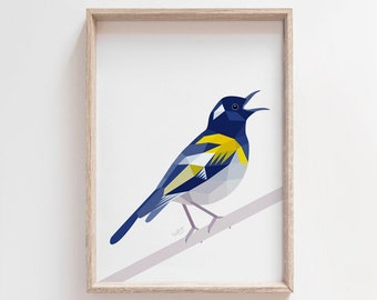 New Zealand art, Hihi print, Zealandia birds, New Zealand stitchbird, Native New Zealand birds, Kiwi art, New Zealand birds, Kiwiana gift