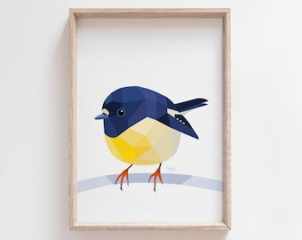 Tomtit illustration, New Zealand tomtit print, Miromiro art, Tomtit art, New Zealand art, New Zealand native birds, Kiwiana bird art, Cute