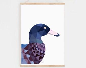 New Zealand art, Blue duck, Duck print, Bird art, New Zealand birds, Kiwi art, Kiwiana, New Zealand gift, Kiwi bird, New Zealand painting