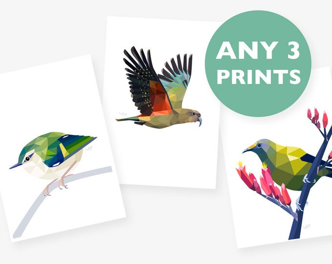 Set of 3 A4 prints, Any 3 prints, Print set, Geometric animal art, Baby room art, Nursery art, New Zealand art, Kea print, Bird illustration