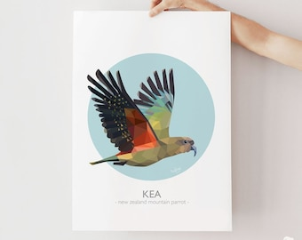 Kea print, New Zealand bird, Kea art, Mountain parrot, Geometric, Kiwiana, Kiwi artist, New Zealand poster, Kea poster, Kiwi classroom art