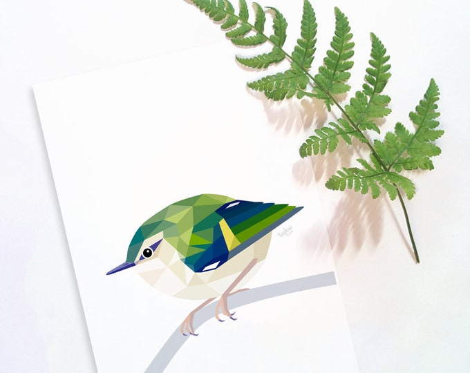 Rifleman bird print, Rifleman art, New Zealand Rifleman, Kiwi birds, Kiwiana,  New Zealand birds, New Zealand wildlife art, Geometric print