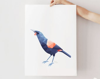 Tieke print, Tieke poster, Saddleback bird art, New Zealand birds, Zealandia, Kiwi gifts, New Zealand wildlife, Tui art, Kiwi bird art, Kea