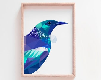 Tui print, Tui illustration, New Zealand birds, New Zealand art, Kiwiana, Kiwi print, NZ artist, New Zealand card, New Zealand gift idea