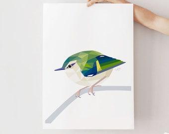 New Zealand art, Rifleman print, Titipounamu, Kiwi birds, New Zealand birds, New Zealand art, New Zealand wildlife, New Zealand school art