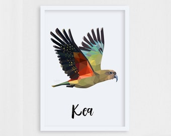 Kea print, New Zealand bird, Kea art, Mountain parrot, Geometric kea, Kiwiana art, Kiwi style, New Zealand interior, New Zealand home art