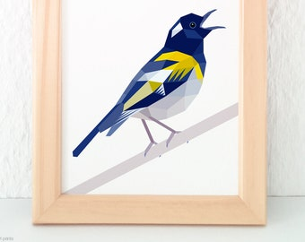 Stitchbird, Hihi, New Zealand bird, Kiwi art, New Zealand native birds, Geometric bird, Singing bird art, Yellow blue bird, New Zealand art