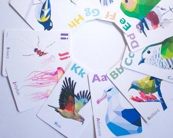 Alphabet cards, abc flash cards, New Zealand ABC cards, New Zealand alphabet cards, Kiwi abc, New Zealand birds, Classroom art, Kiwiana abc