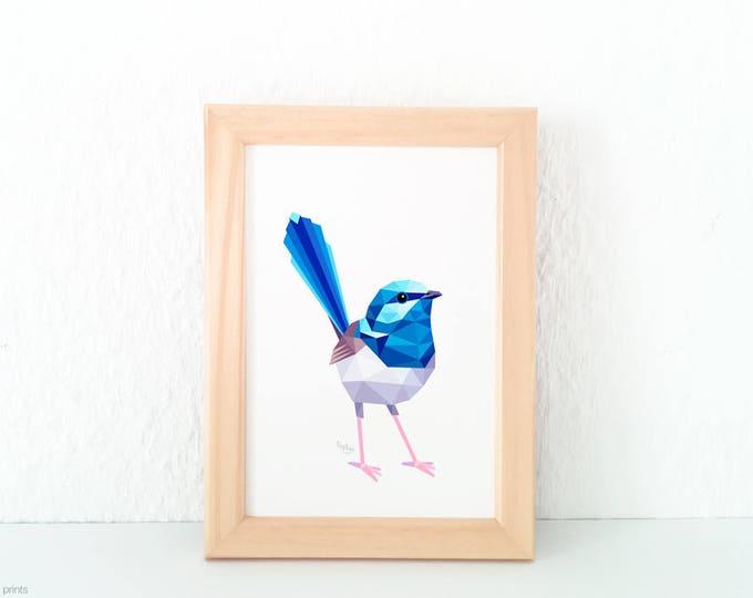 Fairy-wren print, Blue wren print, Wren illustration, Australian wren, Australia bird art, Australian wildlife, Australian wren print, Blue