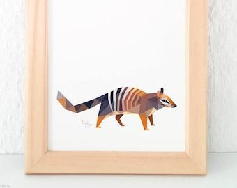 Numbat illustration, Australian wildlife, Australian bush animals, Australian Numbat, Numbat print, Animal wildlife art, Conservation art