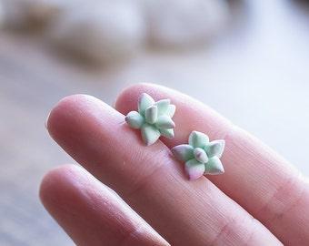 Succulent post earrings - succulent studs - succulent jewelry  - botanical, nature earrings - plant jewelry - terrarium earrings - mint