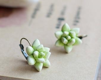 Succulent earrings - succulent jewelry - green botanical earrings - tropical jewelry - nature inspired earrings - porcelain earrings