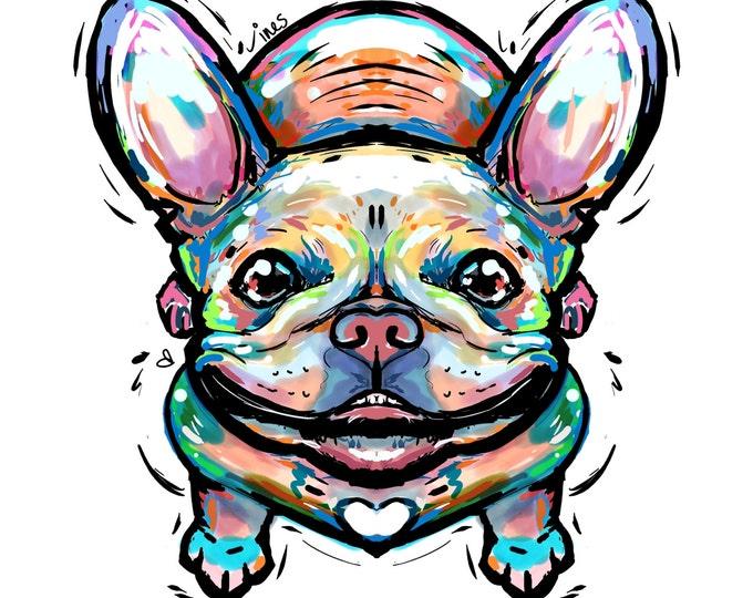 French Bulldog doodle
