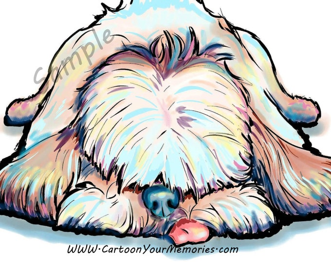 Sleeping shihtzu art print