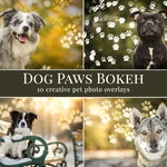 Dog Paws Bokeh photo overlays, pet photo overlays, animal photo overlays for Photoshop, lights overlays, bokeh overlays