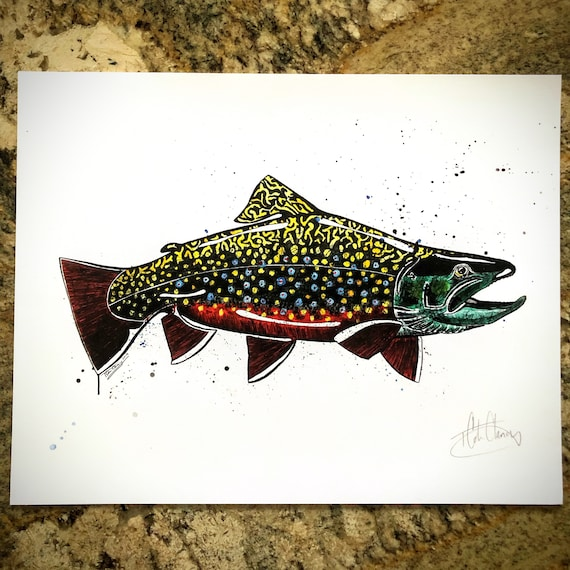 Brook Trout Art Print - 11x14