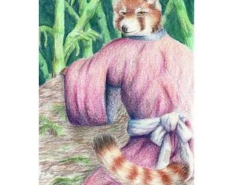 Red Panda - Original Colored Pencil