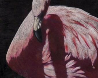 Flamingo - Original  Colored Pencil on Shrink Plastic