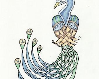 Celtic Peacock 2- Original Colored Pencil