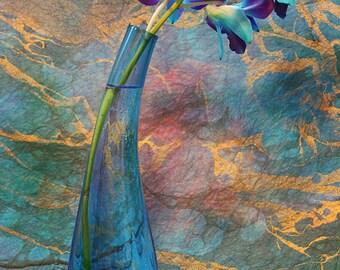 Flower Photography - Blue and purple orchids, 8x12 fine art photograph