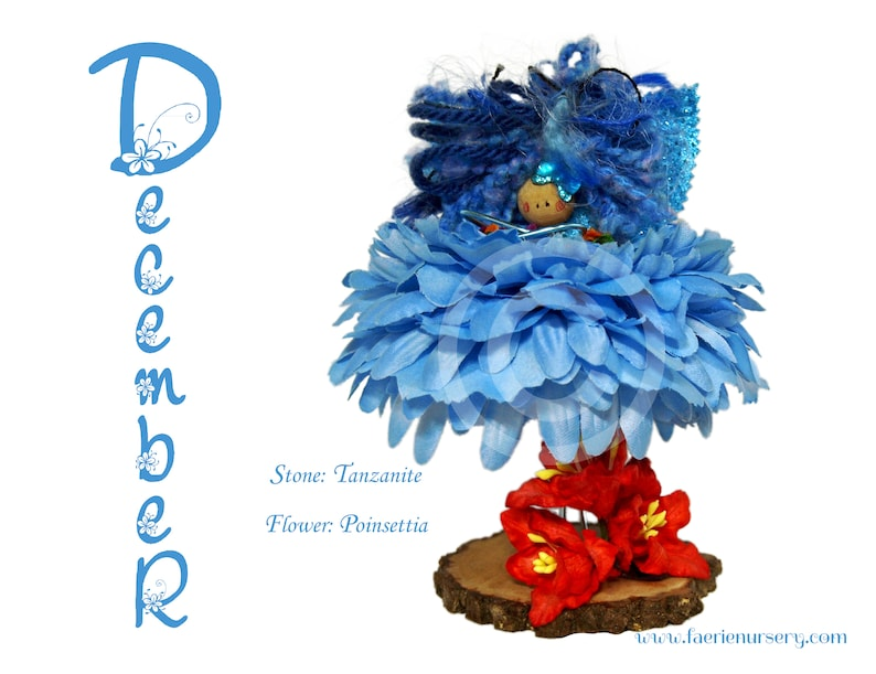 The Calendar Faeries  December  Tanzanite Poinsettia image 0