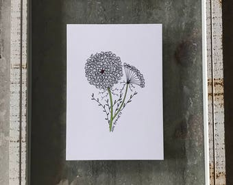 Queen Anne's Lace - Elle Karel Illustration