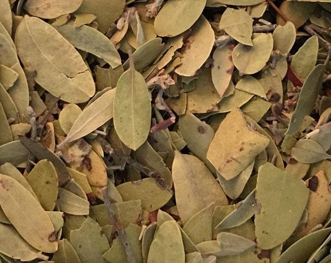 Uva Ursi Leaves, Whole, Arctostaphylos uva-ursi,  1 oz.