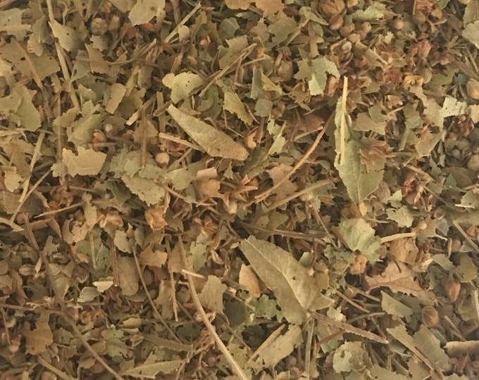 Linden Herb, Tilia europaea,  1 oz.