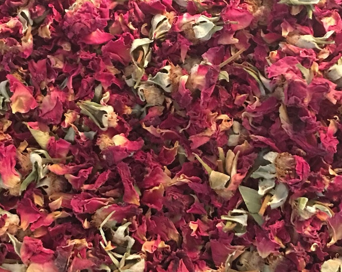 Rose, Red Petals, Buds, Stems, and Leaves, Rosa centifolia,  1 oz.