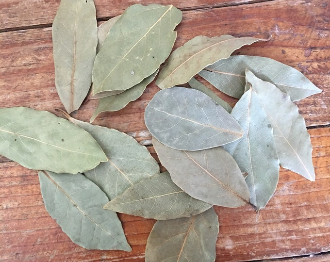 Bay Leaves, Whole, .25 oz., Laurus nobilis