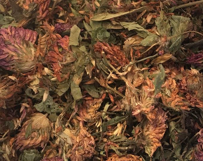 Red Clover Tops, Trifolium pretense,  1 oz.