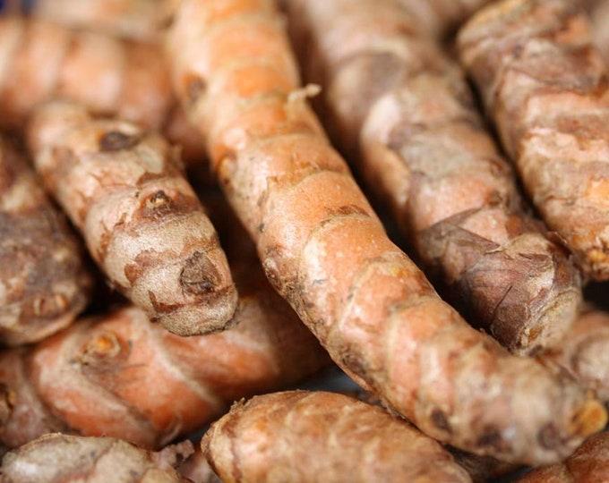 Turmeric Root Powder, Curcuma longa, Certifed Organic,  1 oz.