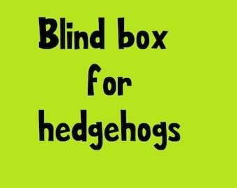 Hedgehog Blind Box - Small Animal Supplies