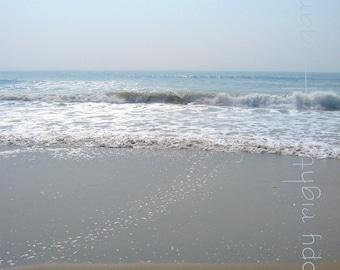 "Photograph - ""Morning Tide""  - Trail of Sea Shells - 10x7.75"
