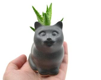 Small kitty planter - cat planter, ceramic planter - black - made in Brazil