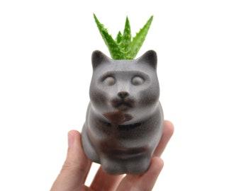 Small kitty planter - cat planter, ceramic planter - gray - made in Brazil