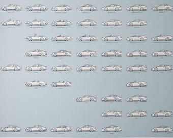 Porsche 911 print