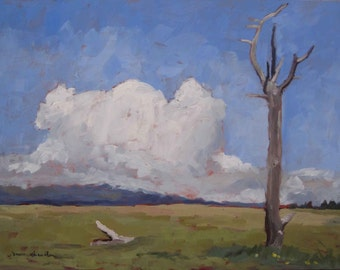 Meadow Below Baldy (Philmont, New Mexico landscape, landscape print)