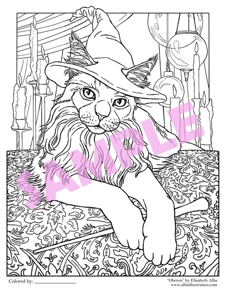 Coloring Book Page Printable Pdf Download Oberon Wizard Cat Line Art