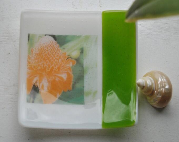 Awapuhi/Hawaiian Torch Ginger Fused Glass Dish/Plate