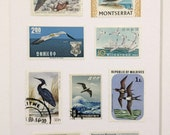 Vintage Stamp Wall Art - Water Birds