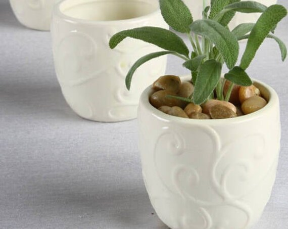 Party Favor Planters, Mini Wedding Planter Favors, Mini Seedling Pot Favor, Succulent Pots, Flower Pot for Wedding Guests
