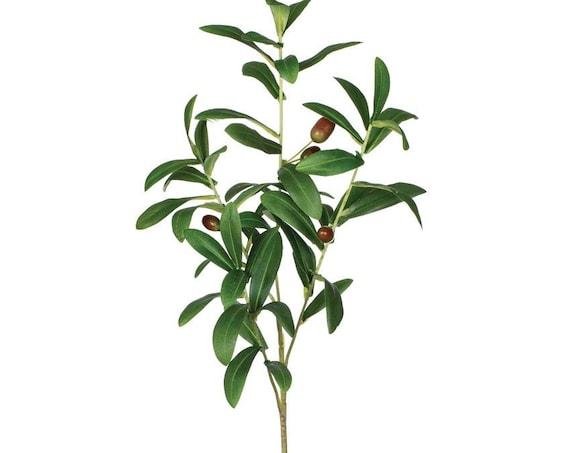 Olive Leaf Spray, Set of 2 Olive Branches, Artificial Floral Branches, Easter Floral Sprays
