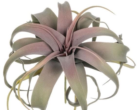 Air Plant, Wedding Succulents, Large Faux Air Grass Plant, Artificial Plants, 11 Inch Faux Air Plant on Stem