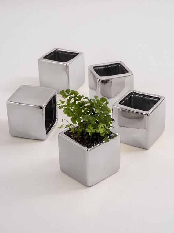 Flower Pots Wedding Favors,  5 Small Wedding Vases, Plant Vases, 5 Little Planters for Party and Gift Favors or Containers