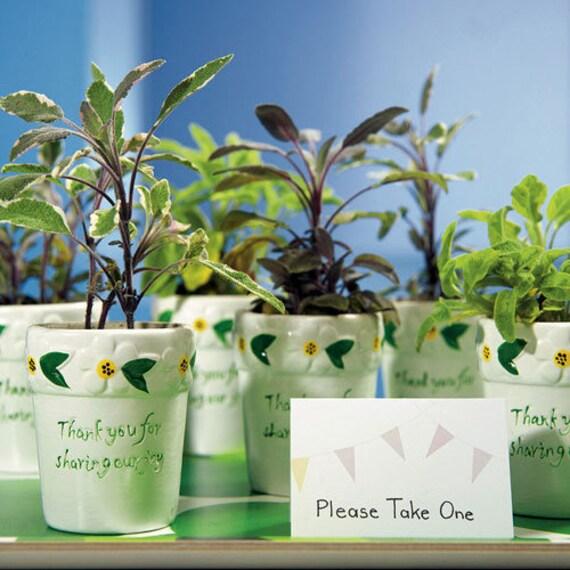 Wedding Favor Flower Pots, Flower Pots, Empty Favor Pots, Thank You for Sharing Our Joy, Mini Flower Pots, Party Flower Pots, Party Favors