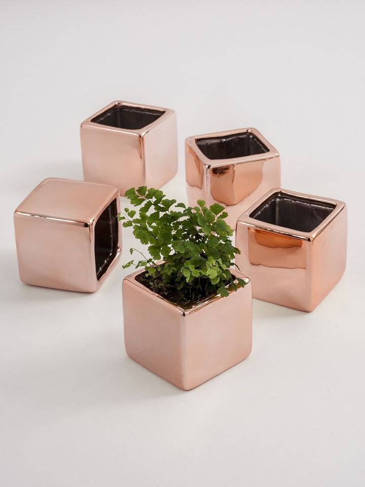 5 Mini Flower Planters Wedding Favorsmini Flower Pots Small Vases