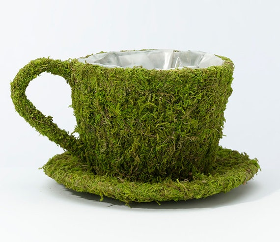 Moss Teacup Planter Flower Holders  to use to make  DIY Wedding or Bridal Shower Tea Party Centerpieces