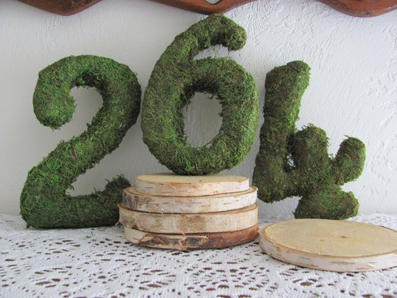Moss Table Numbers and Wood Rounds, DIY Moss Numbers Birch Wood Bases, Event Table Numbers, DIY Wedding Numbers Tables 1 to 10 etc.
